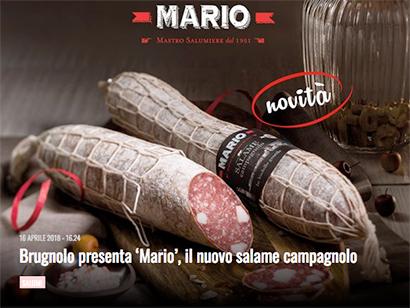 BRUGNOLO_campagnolo_mario